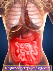 Dieta para doenças do intestino delgado