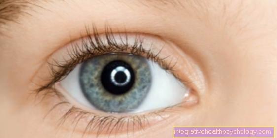 Øjen salve med kortison